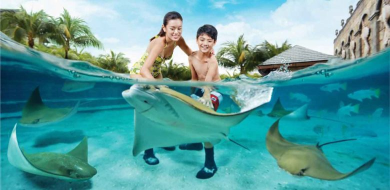 Adventure Cove Waterpark Singapore 1