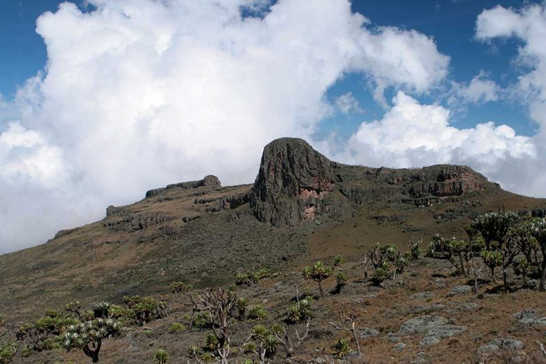 2079715 - jackson´s summit on mount elgon / uganda