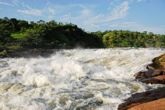 11931425 - murchison falls on the victoria nile, northern uganda