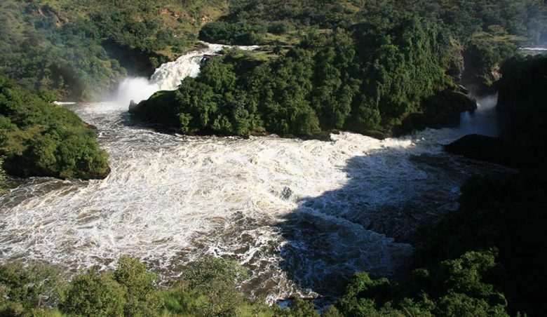 14427102 - murchison falls national park safari reserve in uganda - the pearl of africa