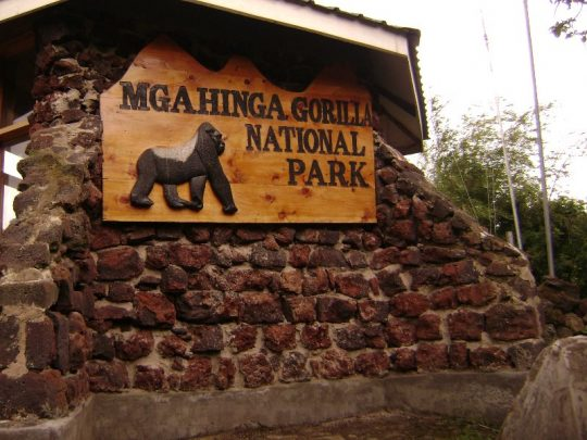 Mgahinga Gorilla National Park 1